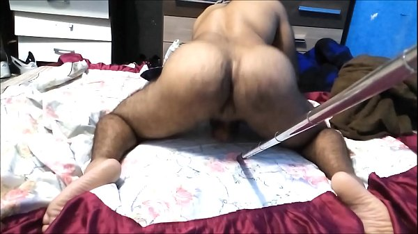 Hairy, Muscle, Brazil anal, Bear gay